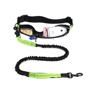 Double Expandable Pounches Hands Free Retractable Dog Leash